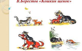 В. берестов. кошкин щенок