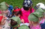 Игровое развлечение в детском саду. старшая группа