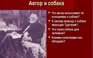 Рассказ ивана тургенева «собака»