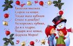 Новогодние стихи для детей 6, 7 лет