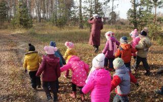 Прогулка в весенний лес в старшей группе. сценарий