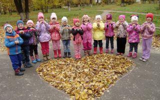 Игры осенью с детьми старшей группы (5-6 лет) в детском саду