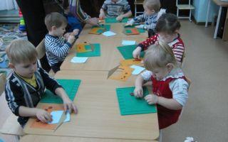 Конспект занятия по экологии в группе раннего возраста