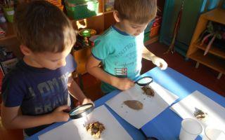 Конспект занятия в 1 младшей группе детского сада. сравнение глины и камня