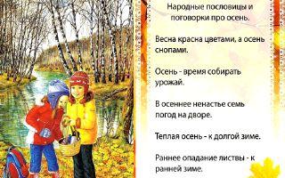 Пословицы и поговорки об осени для дошкольников 5-7 лет
