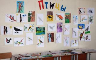Конкурсы ко дню птиц для школьников