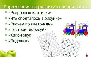 Игры на развитие зрительного восприятия у детей раннего возраста