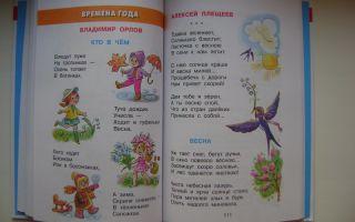 Рассказы для детей первой младшей группы детского сада