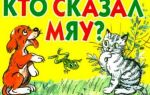 Инсценировка сказки сутеева: кто сказал «мяу»? для детей 5-7 лет