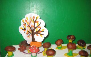 Конспект занятия в детском саду в подготовительной группе. грибы