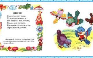 Стихи про птиц для детей 3-5 лет