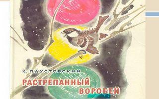 Паустовский «растрёпанный воробей»