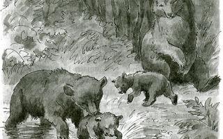 Бианки «купание медвежат»