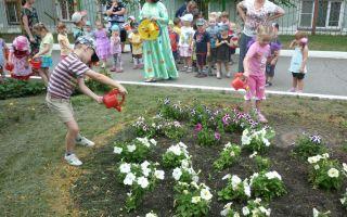 Экологический праздник в детском саду. старшая группа