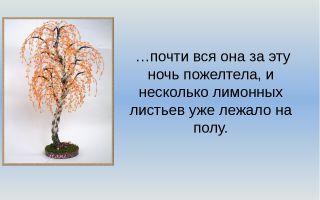 Паустовский «подарок»