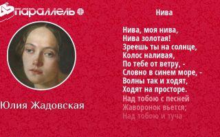 Юлия жадовская «нива»