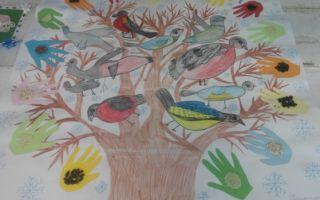 Конспект занятия по экологии в старшей группе на тему: покормите птиц зимой