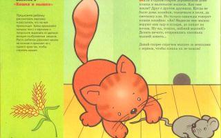 Конспект игрового занятия для детей третьего года жизни на тему: мышонок