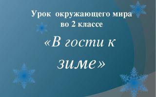 Конспект урока по окружающему миру, 2 класс. в гости к зиме. школа россии
