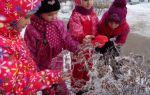 Наблюдение за природой зимой. подготовительная группа