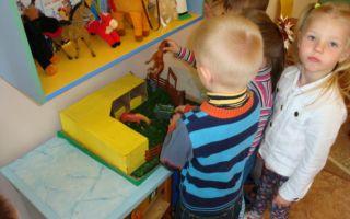 Экскурсии в младшей группе детского сада