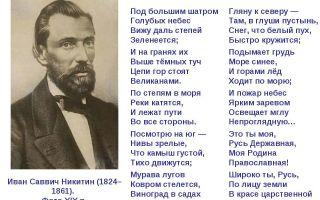 Никитин «русь»