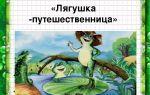 Гаршин «лягушка-путешественница»