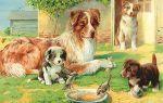 Конспект занятия в группе раннего возраста. собака со щенятами