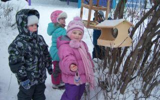 Творческая программа для прогулок в детском саду в старшей группе на тему: зима