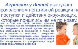Как проявляется агрессивное поведение у детей
