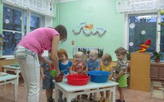 Конспект занятия в группе раннего возраста. свойства воды