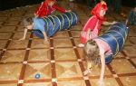 Весёлые игры для школьников в помещении