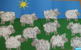 Занятие в средней группе детского сада. домашние животные