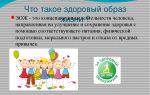 Классный час о здоровом образе жизни в начальной школе. значение органа слуха