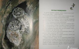 Бианки «лесные разведчики»