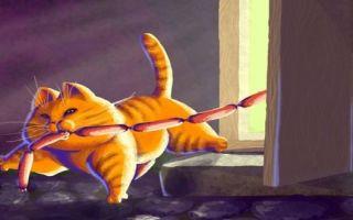 Паустовский. кот ворюга