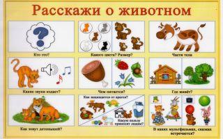Рассказы о животных для детей младшей группы