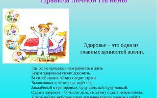 Конспект занятия по познанию в старшей группе детского сада на тему: правила личной гигиены