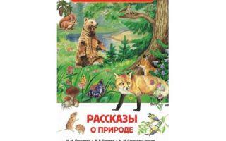 Рассказы о природе, 2-3 класс. внеклассное чтение