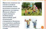 Стихи про отдых и прогулки для детей средней группы