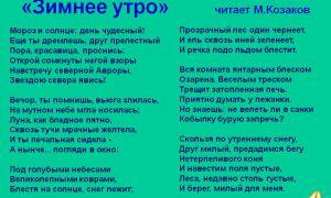 Пушкин «зимнее утро»