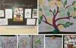 Проект для начальной школы, 3-4 класс. любимое дерево нашей семьи