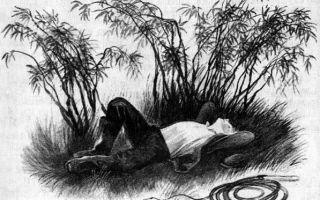 Юрий коваль «бунькины рога»