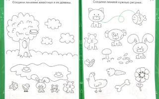 Развивающее занятие для детей 7-8 лет