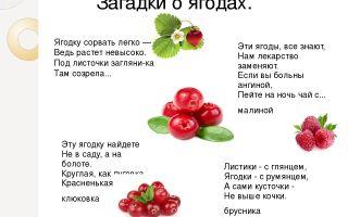 Загадки про ягоды для детей 5-7 лет с ответами
