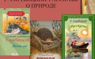 Рассказы о природе для школьников