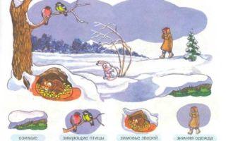 Занятие в средней группе «как зимуют дикие звери»
