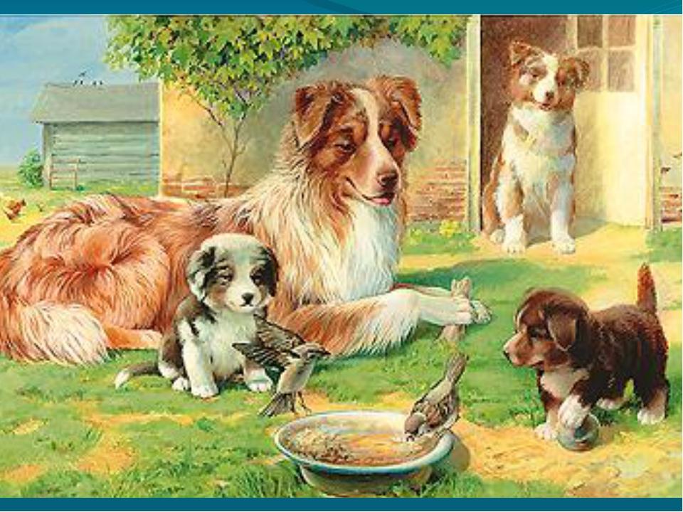 Конспект занятия в группе раннего возраста. собака со ...